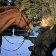 Häst och Theresia Henriksson